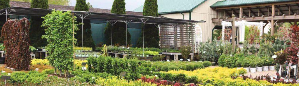 Garden Center 40